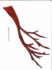 Kidfunideas.com spring tree blossom pattern