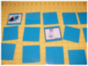 Kidfunideas.com Arctic Animals match game for kids picture of the game
