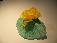 Kidfunideas.com color changing magic trick picture of the yellow flower