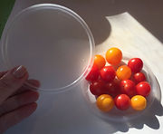 Kidfunideas.com tip: cut a bunch of cherry tomatoes at once using two plastic lids