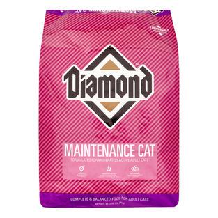 Diamond Feline - Maintenance Cat