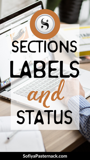 TUTORIAL | Scrivener 3 Sections, Labels, and Status
