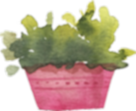 potted_0002_3.png