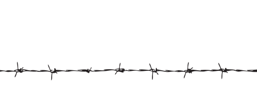—Pngtree—straight barbed wire_112650.png