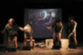 Flamenco con video.JPG