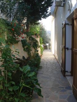 Shady rear gardens