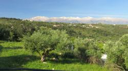 Spring White Mountains
