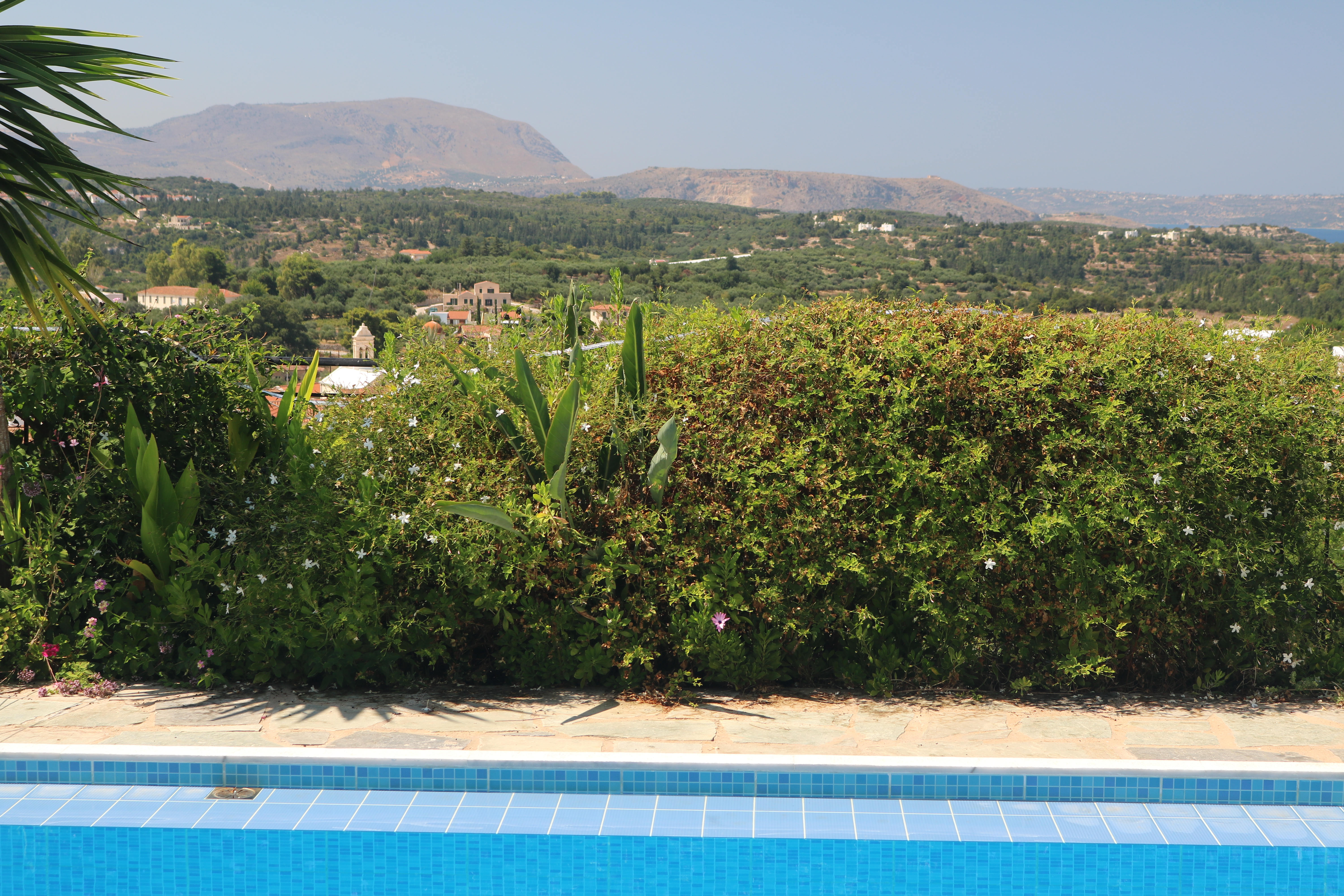 Poolside border with views...