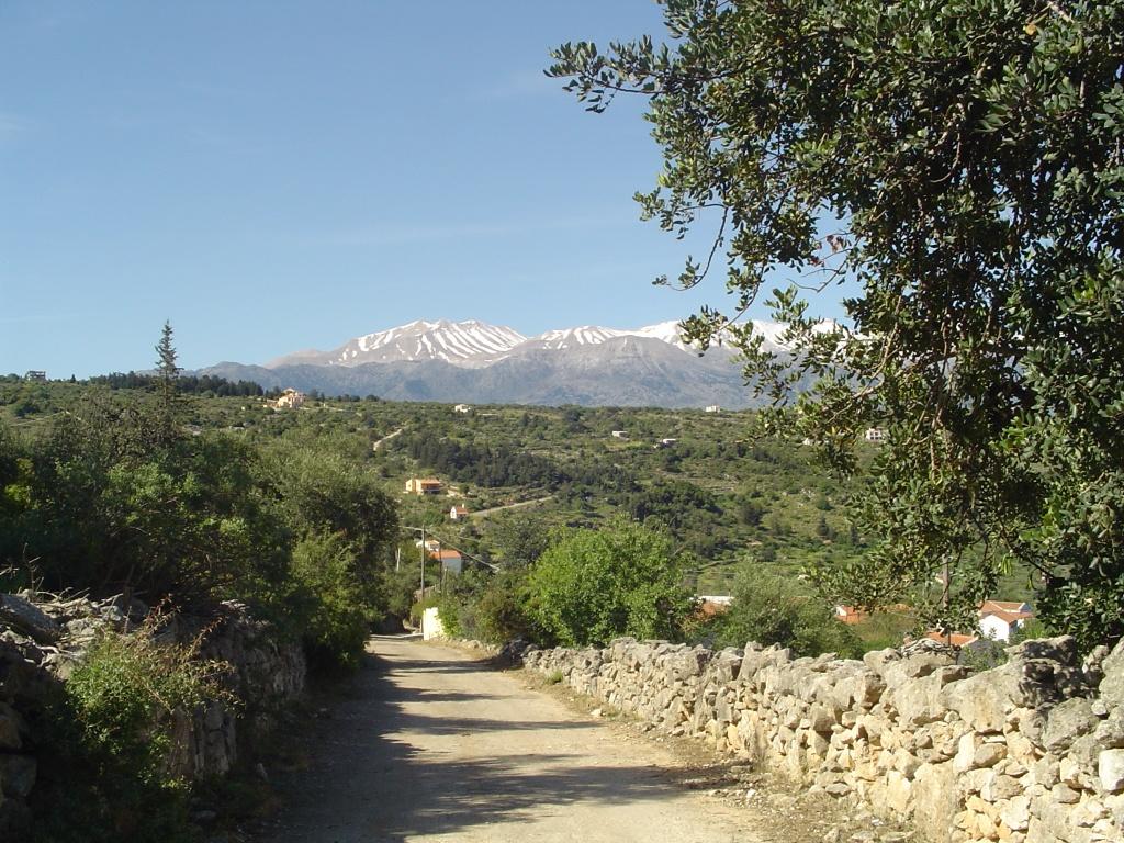 Road past the villa