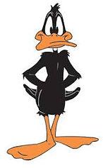 daffy14.jpg