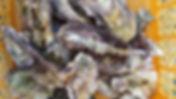 コーストテーブル 牡蠣 通販