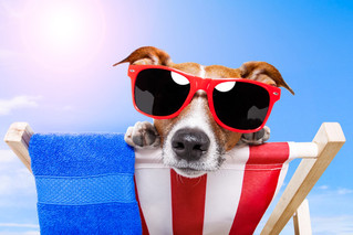 Trucos Para Mejorar Tu Ingles En Vacaciones!