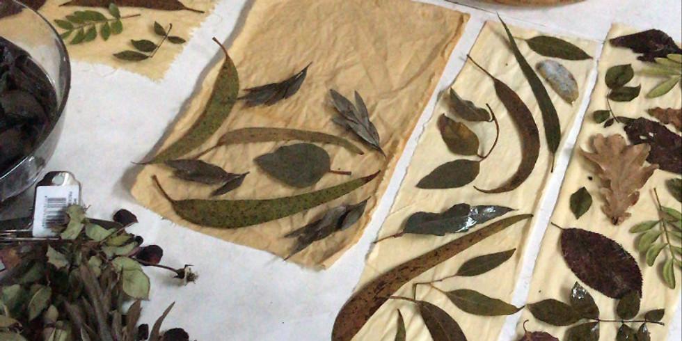Impressão Botânica em tecido e papel
