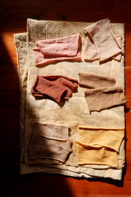 Natural Dye Samples from Food Waste