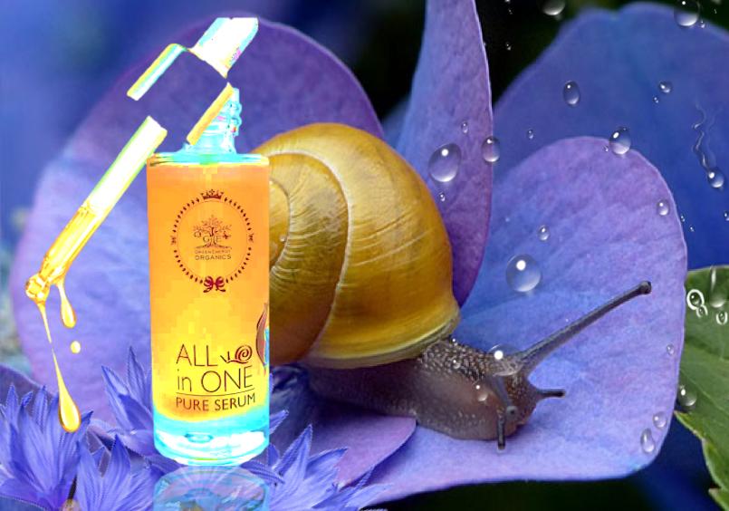allinone pure serum bava di lumaca snail