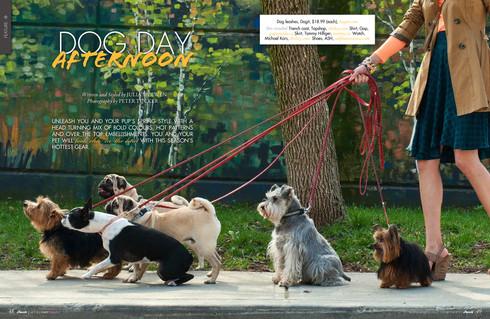 Pawsh Magazine