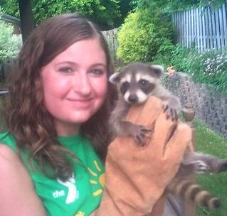 Three Rivers Wildlife Control Raccoon Removal