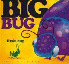 Big Bug Little Bug picture book