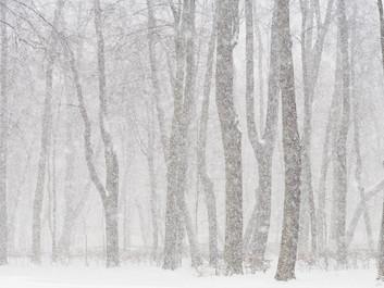 Winter Running Injury Avoidance