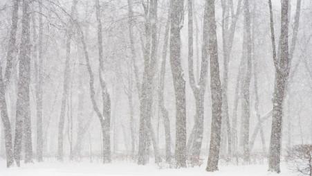Te laat op het werk wegens sneeuw of vrieskou