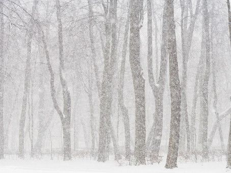 Seasonal Affective Disorder: The Winter Blues