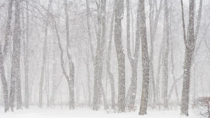 Facing Winter Seasons (2 Tim 4:9-22)