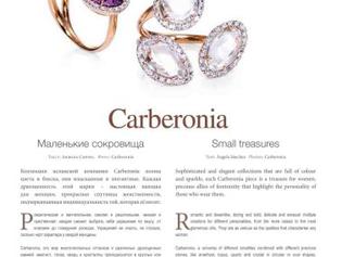 Los pequeños tesoros de Carberonia