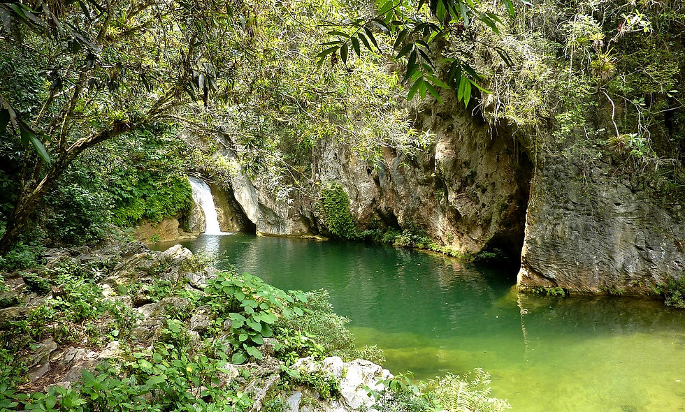 Da Trinidad: Topes de collantes con guida di ecoturismo