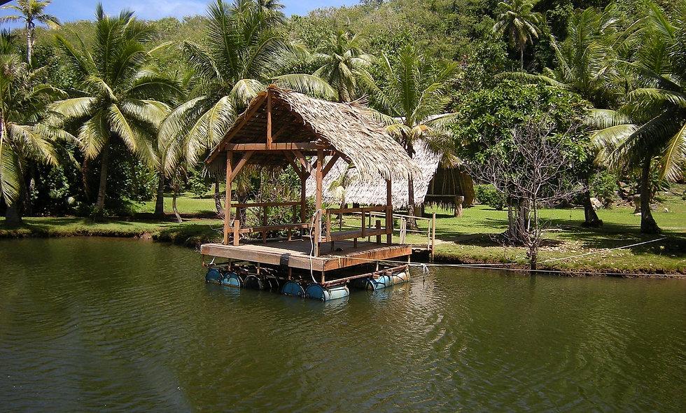 Dall'Avana: Tour Guamà e Caleta Buena