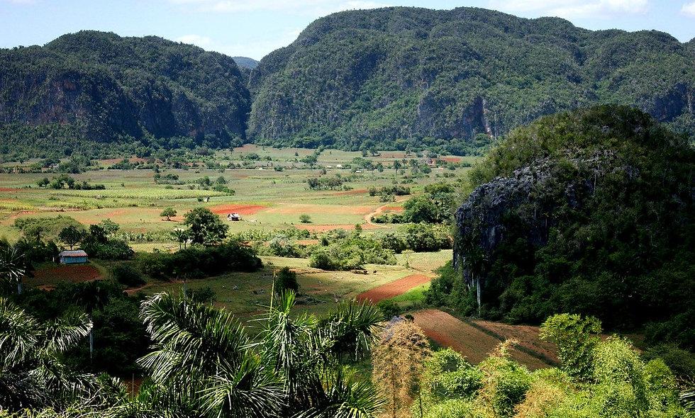 Dall'Avana: Valle de Viñales
