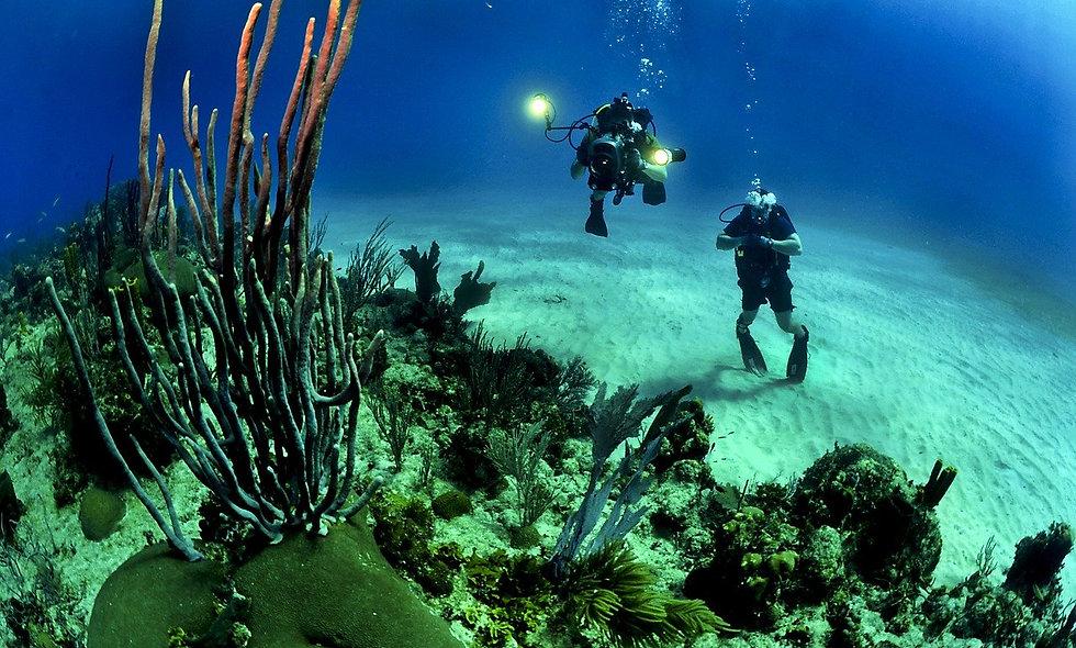 Immersione subacquea di Grand Cayman
