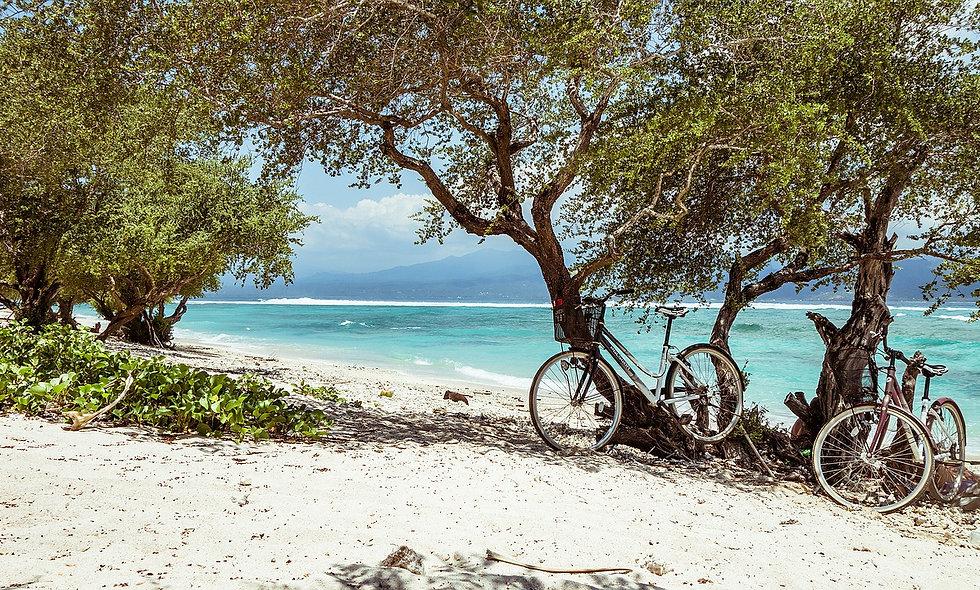 Dall'Avana: Cuba in bicicletta visita dell'Avana