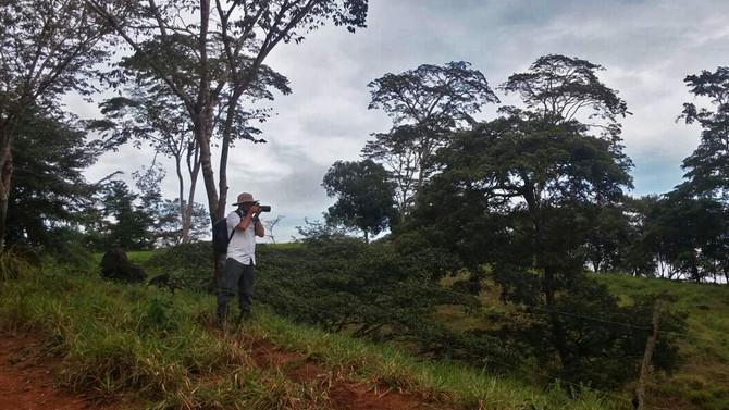 UN photography mission: green livestock