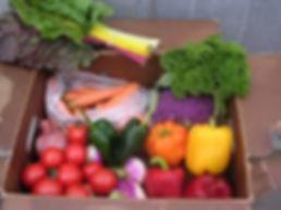Vegetable CSA Box.jpg