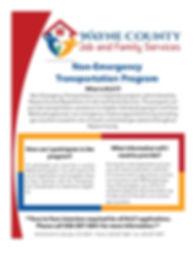NET Flyer.jpg