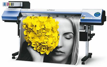 roland printer.png