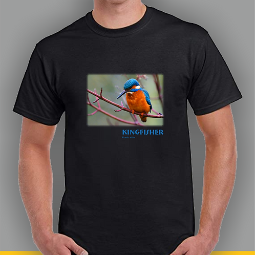 Kingfisher Inspired T-shirt
