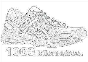 1000km trainer.jpg