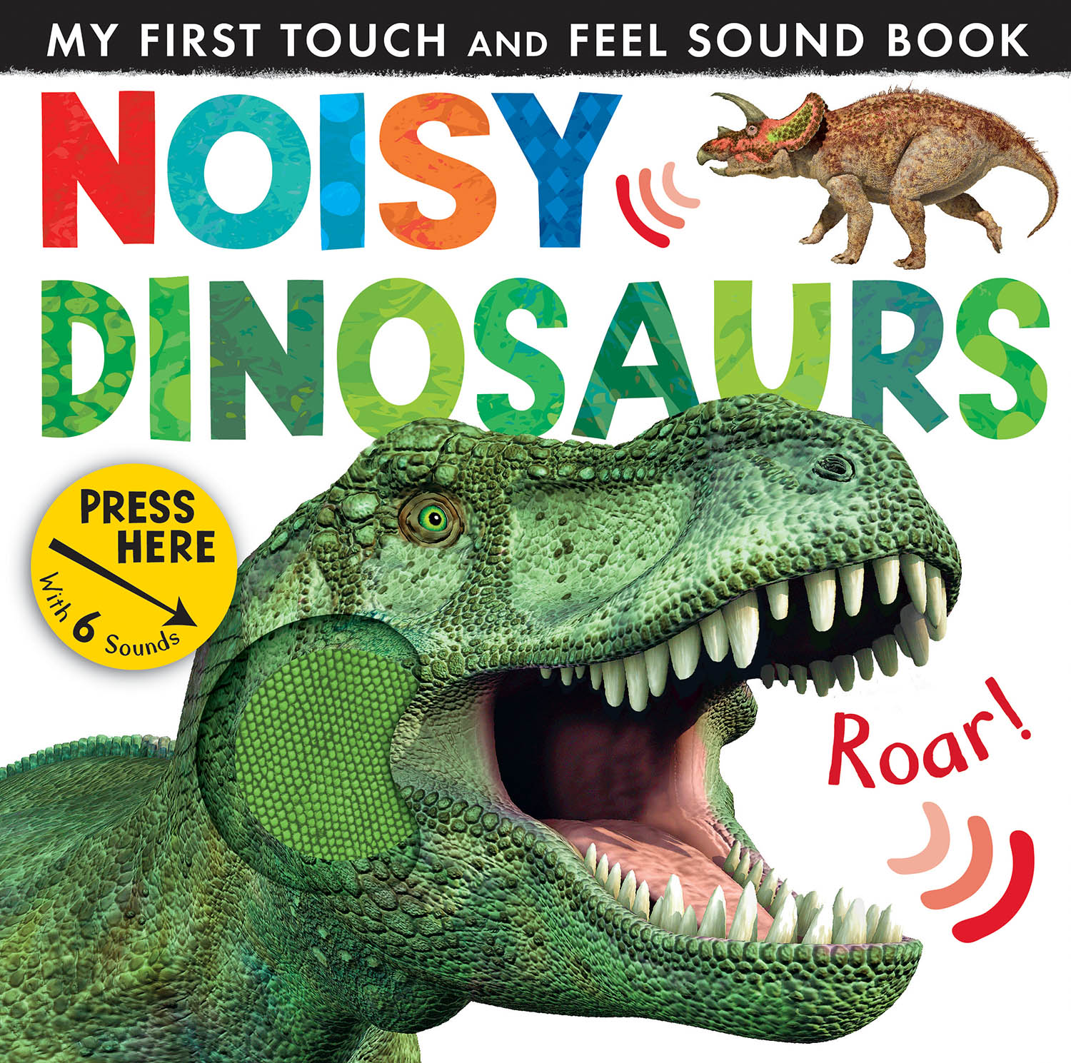Noisy Dinosaurs book cover