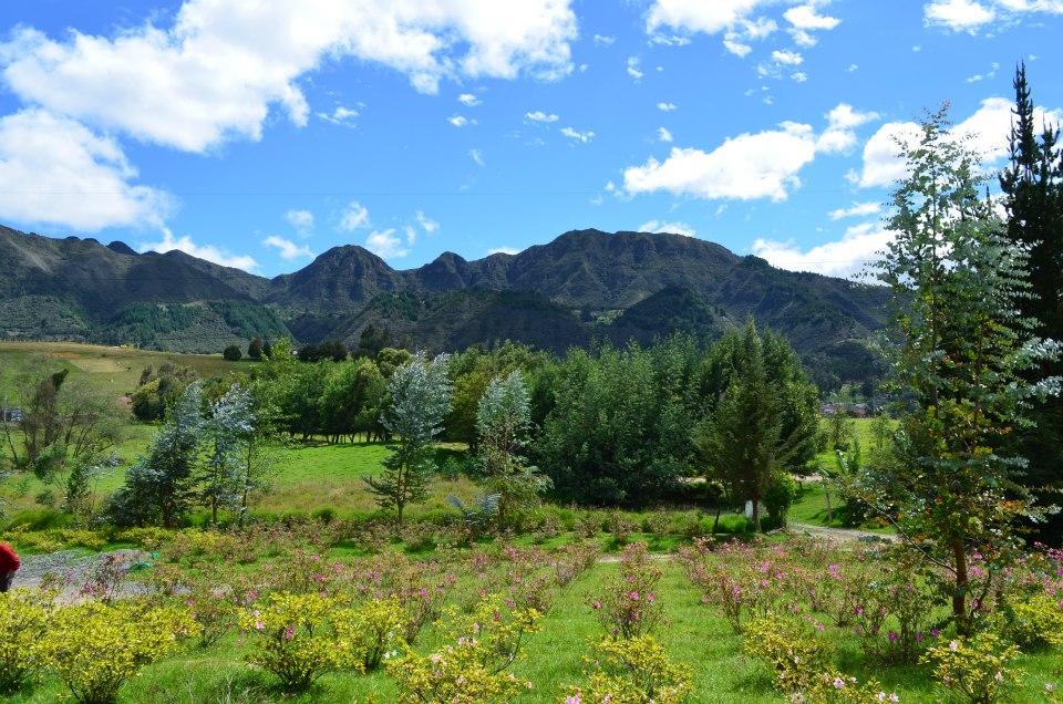Vista a los Andes