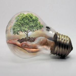 HUMAN CENTRIC LIGHTING & WELLNESS