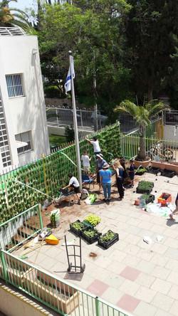 בונים קיר ירוק לתפארת מדינת ישראל