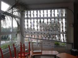 חוות חלון בית ספר לטבע 2