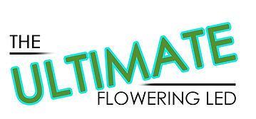 Ultimate LED flowering light