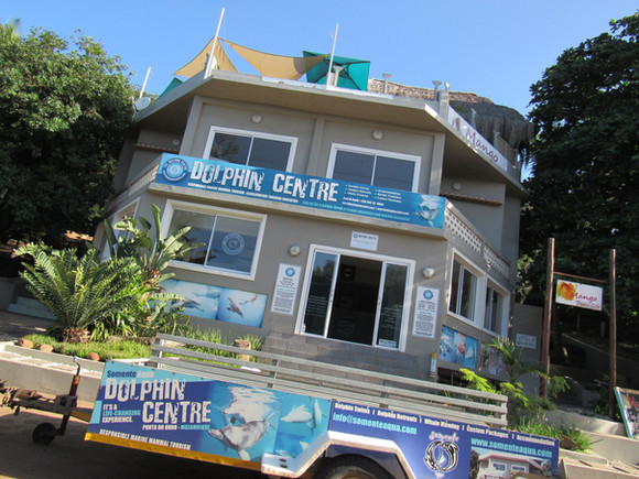 Dolphin Centre Mozambiue
