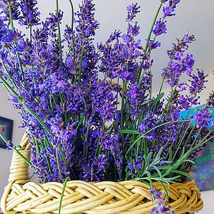 This basket of lavender smells divine 📷