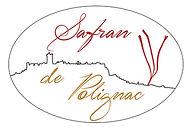 Logo_Safran_site.jpg