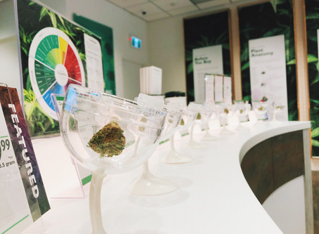 Manitoba to open cannabis store market 'to all prospective retailers'