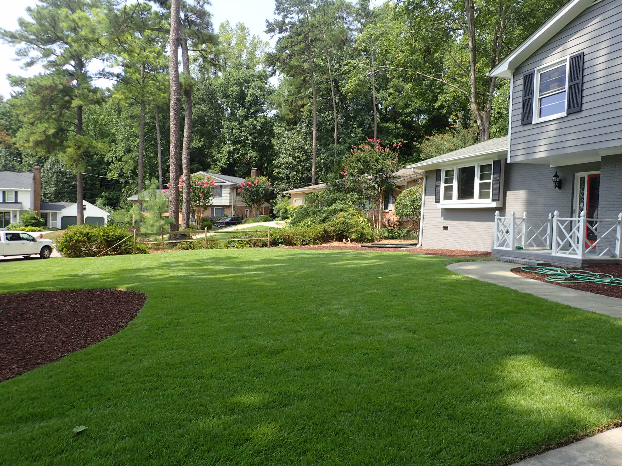 Compadre Zoysia Sod Raleigh nc
