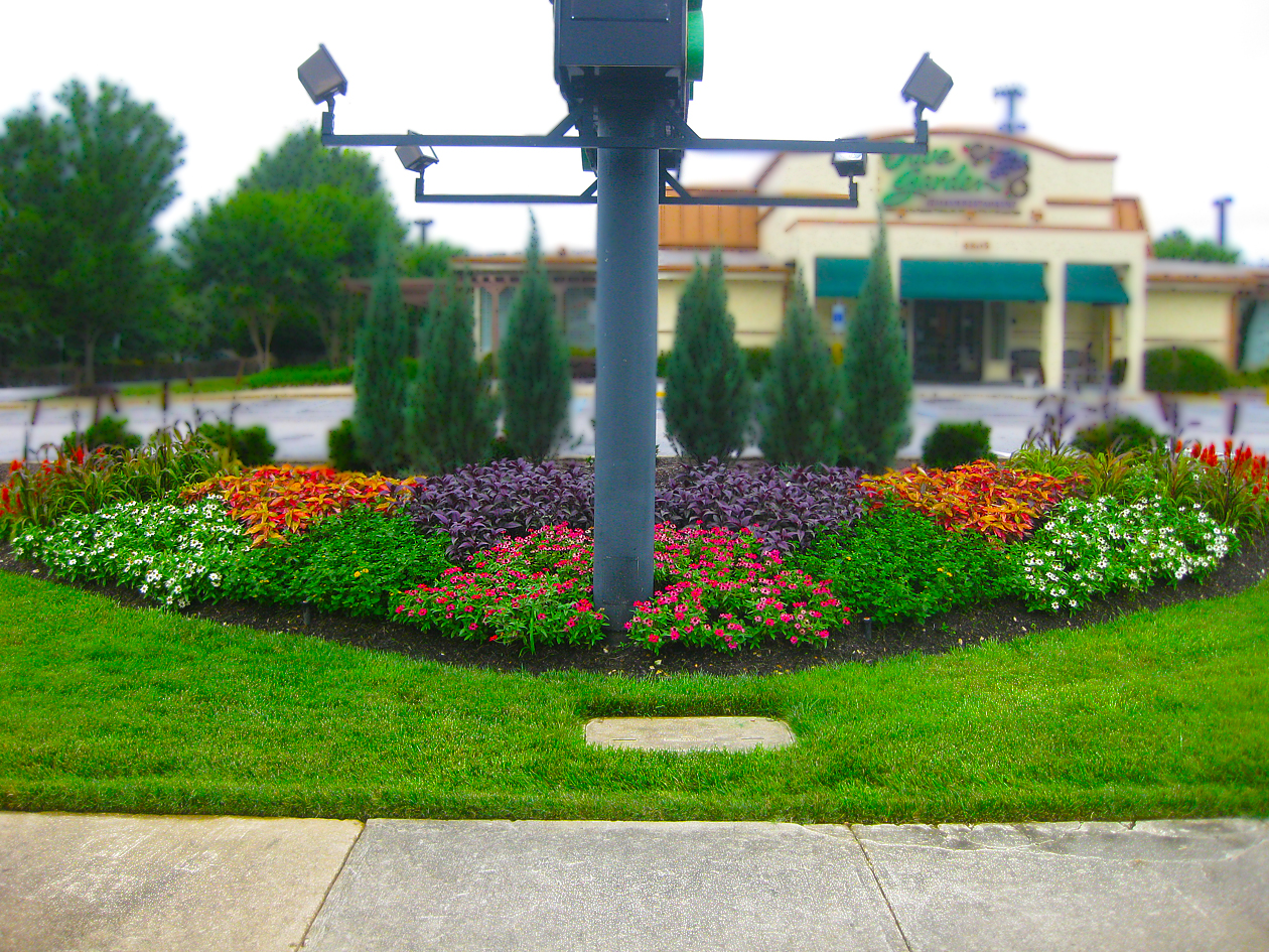 Commercial Landscaping Raleigh NC